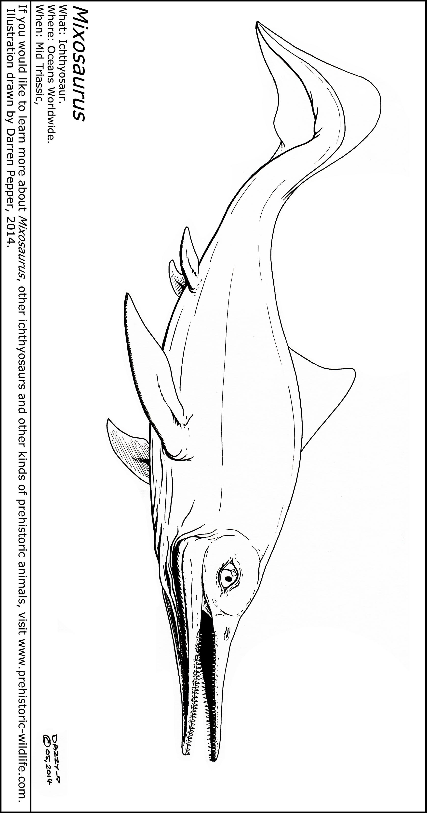 Ichthyosaurus Coloring Page - Ankylosaurus Stock Images ... Ichthyosaurus Coloring Page
