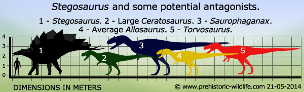 Ph 7 Prehistory Starlux Stegosaurus Dinosaur