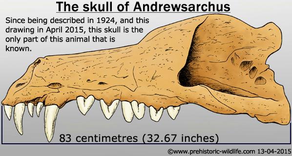 Andrewsarchus