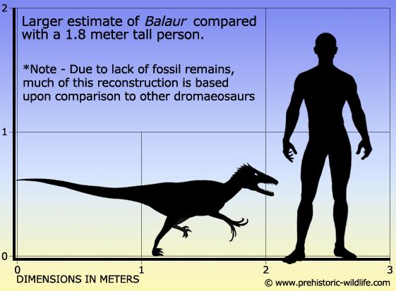 Resultado de imagen de balaur prehistoric wildlife