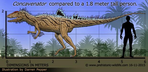Resultado de imagen de concavenator prehistoric wildlife
