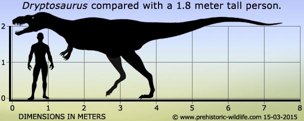 Metriacanthosaurus Dryptosaurus
