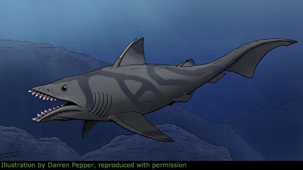 top 10 prehistoric sharks