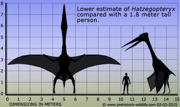 Hatzegopteryx Size Hatzegopteryx