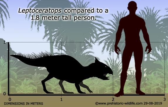 Resultado de imagen para leptoceratops prehistoric wildlife