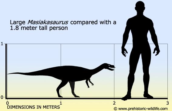 masiakasaurus-size.jpg