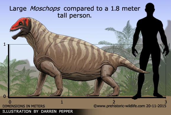 M Named Dinosaurs Moschops
