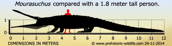 mourasuchus-size.jpg