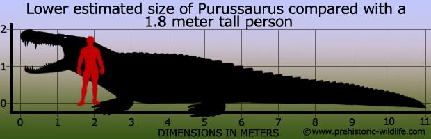 620 x 200 jpeg 68kBPurussaurus