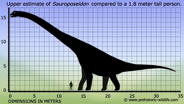 Sauroposeidon