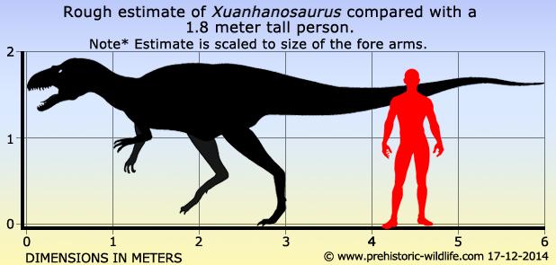 Xuanhanosaurus
