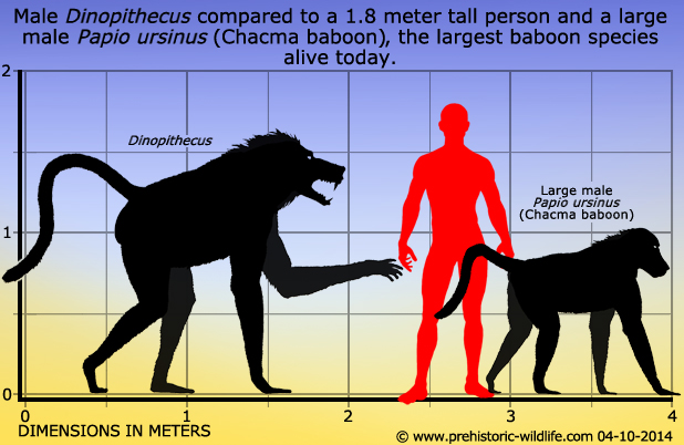 Image result for dinopithecus